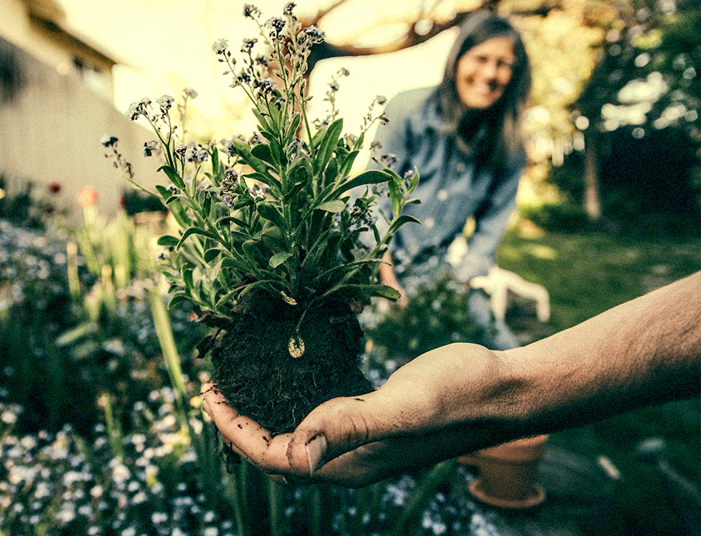Protect Form | Gardening
